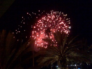 Fireworks in Tampa.jpg